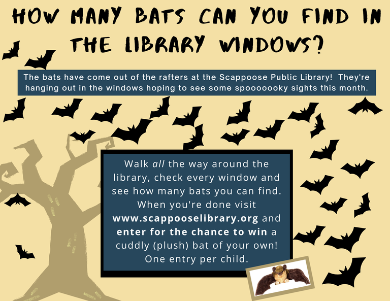 Bats in the library! (1).png