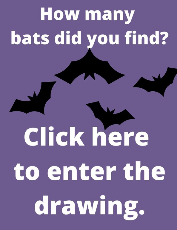 How many bats did you find? Click here to enter the drawing.