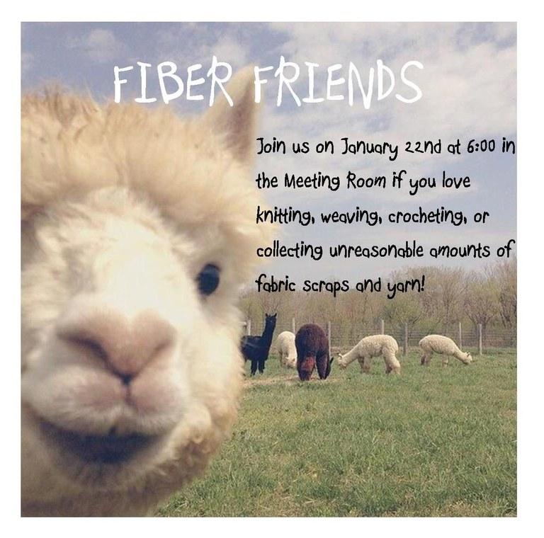fiber friends 1.22.19.jpg