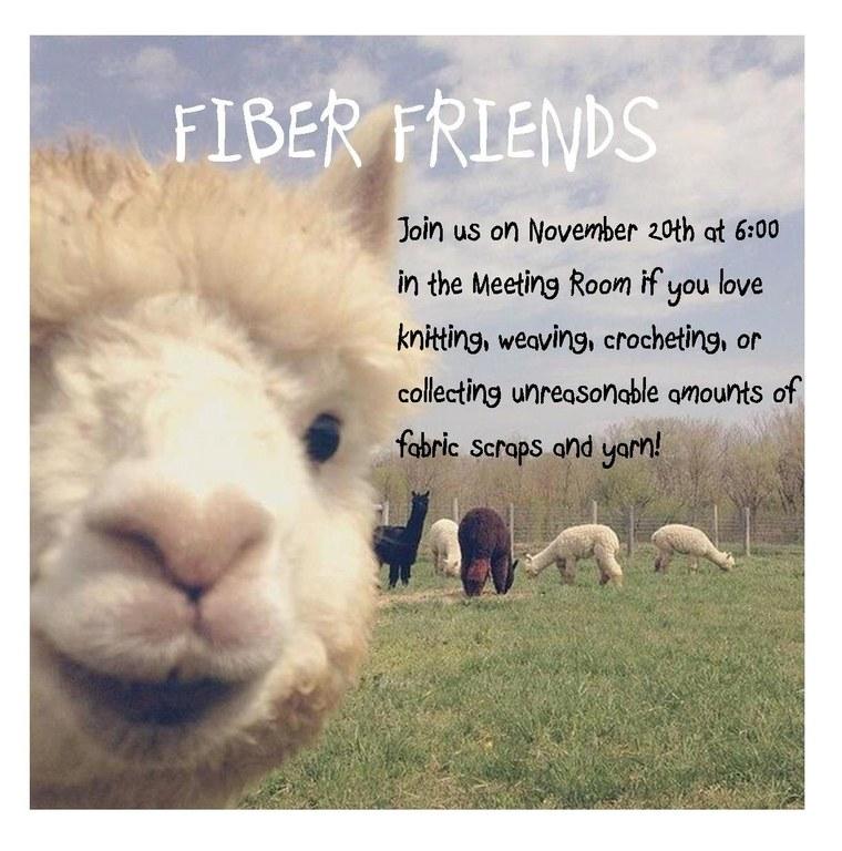 fiber friends 11.20.18.jpg