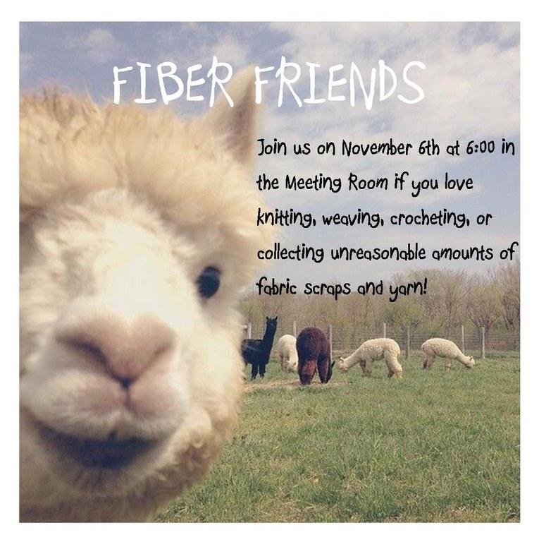 fiber friends 11.6.18.jpg