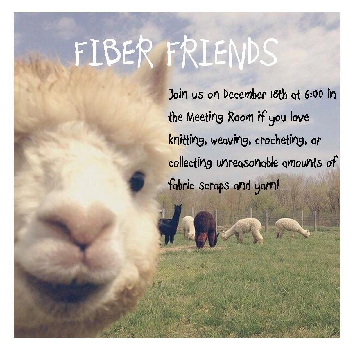 fiber friends 12.18.18.jpg