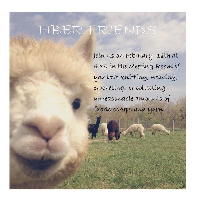 fiber friends 2.18.20.jpg