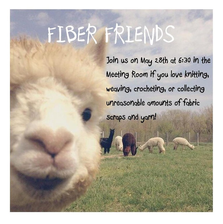 fiber friends 5.28.19.jpg