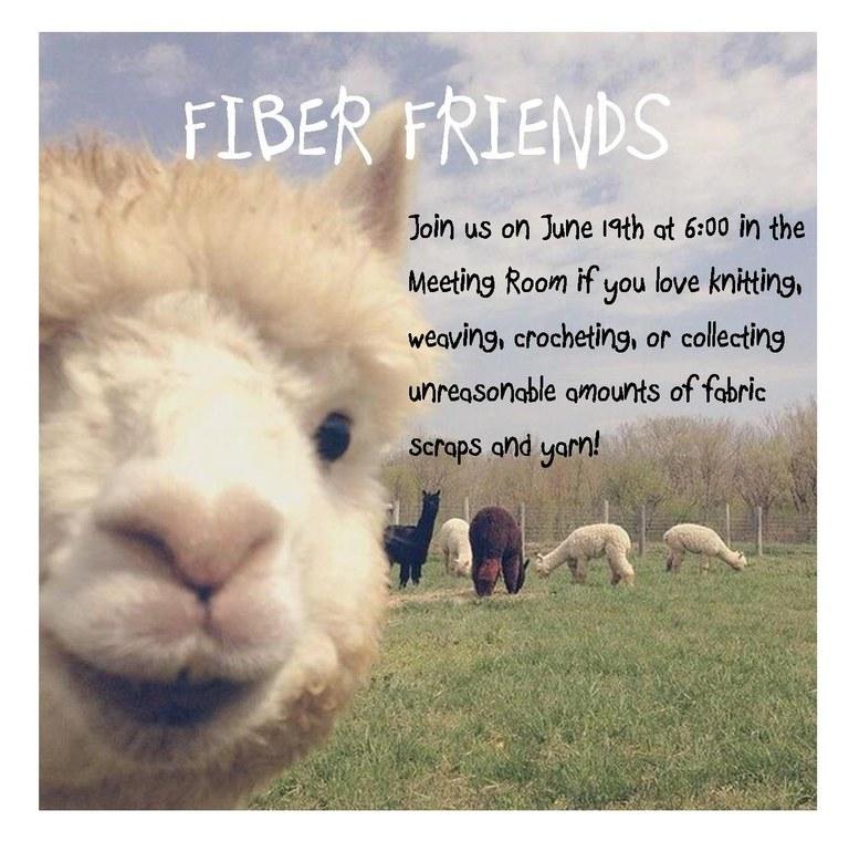 fiber friends 6.19.18.jpg