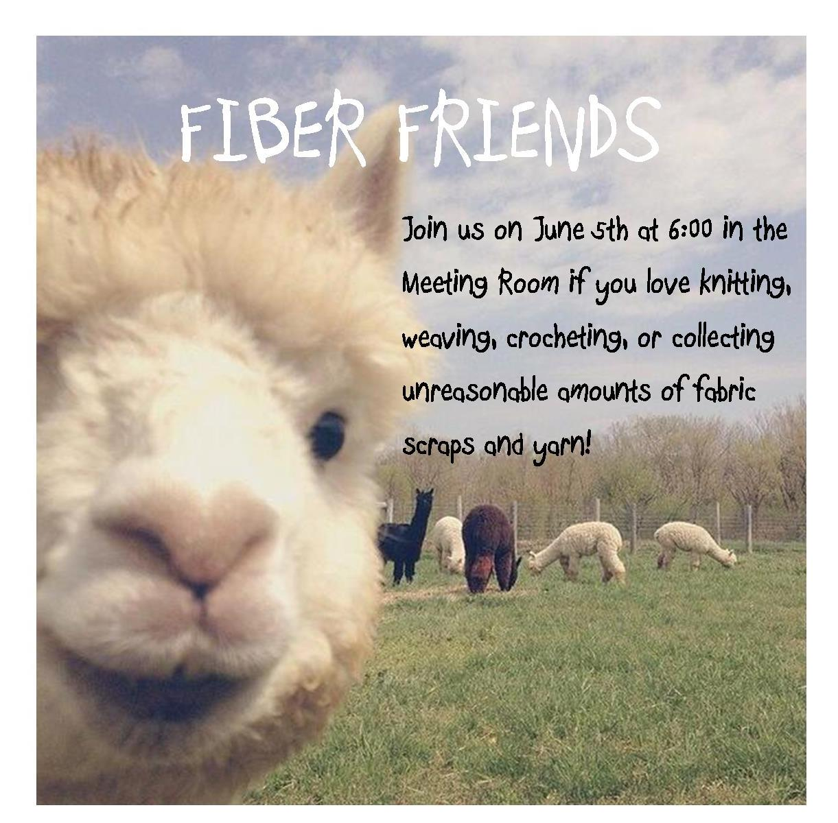 fiber friends 6.5.18.jpg
