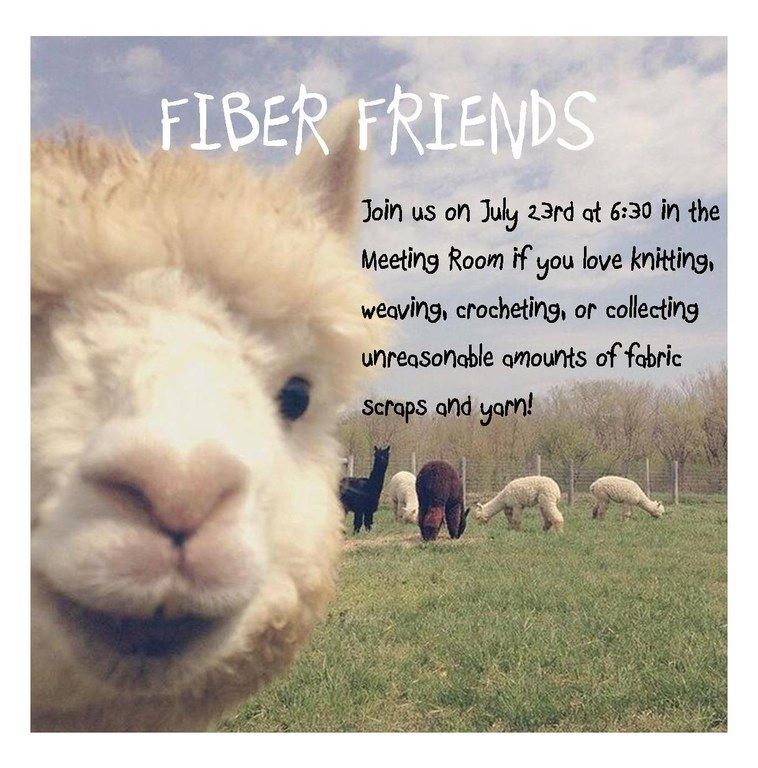 fiber friends 7.23.19.jpg